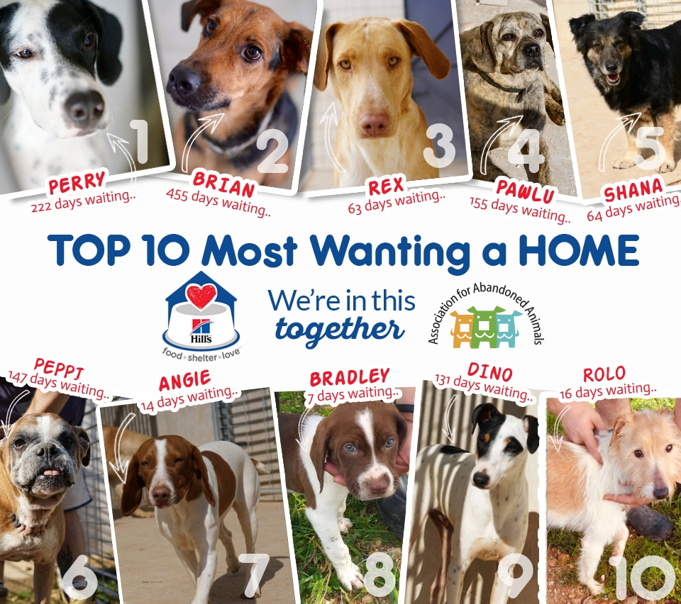 TOP 10 MOST WANTING A HOME UPDATE 6